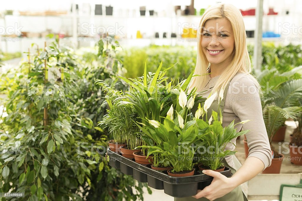 Young smiling florist working in greenhouse royalty-free stock photo