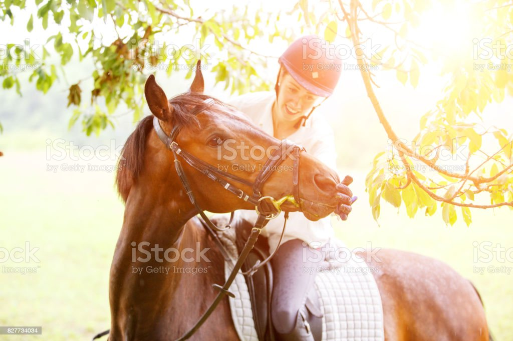 Young smiling rider woman touching lips of horse stock photo