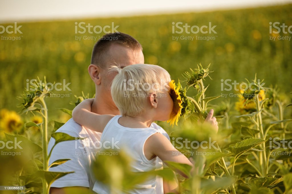 Young son holding and smelling flower sunflower sitting on father...