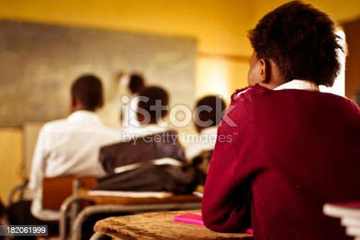 istock Young South African students concentrating in English class 182061999