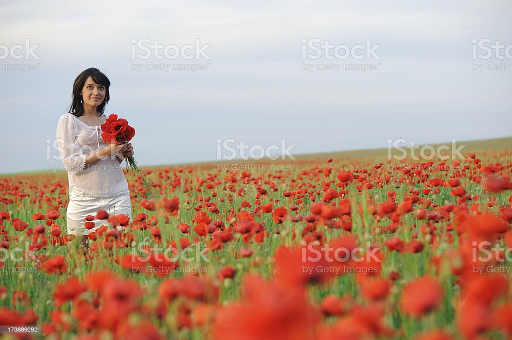 young Spanish woman in poppy field royalty-free stock photo