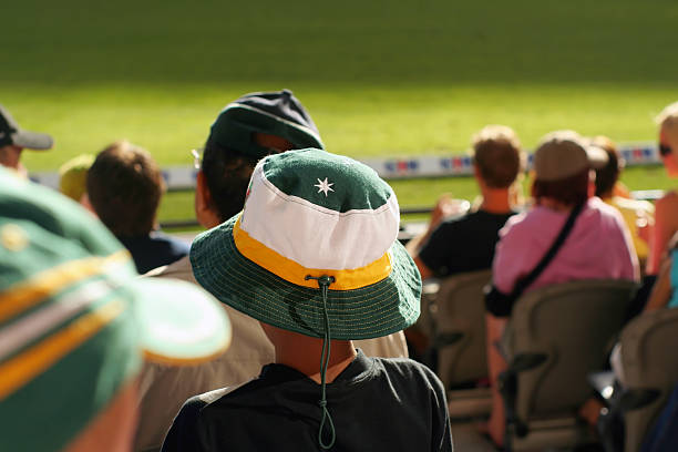 young spectator a young boy watches his team at a sports arena. Actually an Aussie cricket supporter watching Australia play an international match, but could be anywhere. sport of cricket stock pictures, royalty-free photos & images