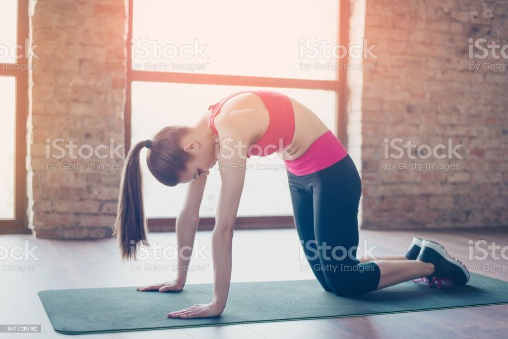Young sportwoman with ponny tale is doing her training for flexibility. She is stylish sports wear, on green carpet stock photo