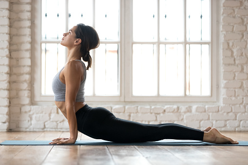 Young sporty woman practicing yoga, doing upward facing dog exercise, Urdhva mukha shvanasana pose, working out, wearing sportswear, pants and top, indoor full length, white yoga studio
