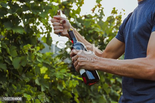 close up of a bottle of wine opened by a male with a t-shirt. grapevine in Ticino
