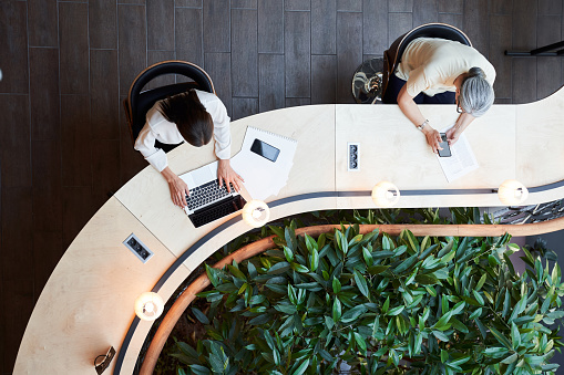 Young brunette woman and a senior lady using their devices while sharing a desk and keeping social distance