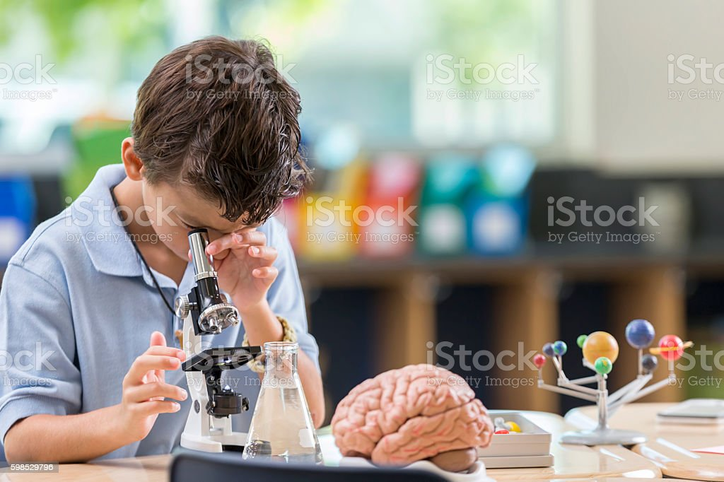 Young student looks through magnifying glass stock photo