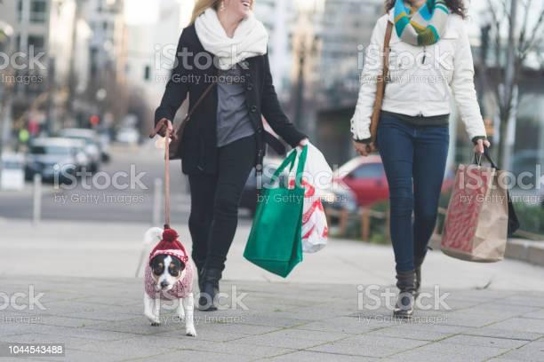 Young stylish females walking down a city street with a dog and bags picture id1044543488?b=1&k=6&m=1044543488&s=612x612&h=mspmouqu3wk7l99r iacebmcnbsukjhba  c gpuvcy=