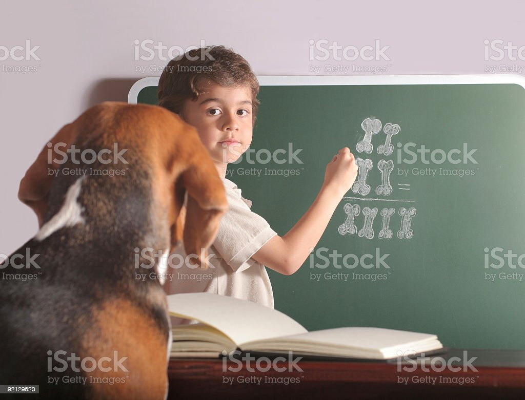 Young Teacher And Special Pupil royalty-free stock photo