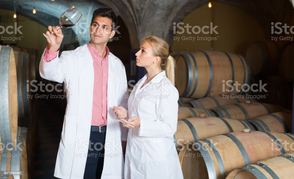 Young team of winery posing with wine stock photo