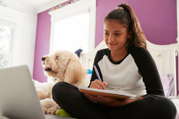 young teen girl studying on her bed beside pet dog - girl study home laptop front imagens e fotografias de stock