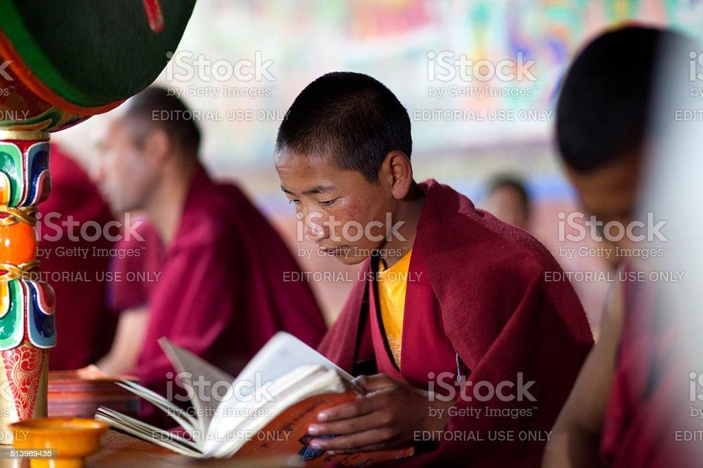 Young Tibetan Buddhist monk praying in Thiksey gompa (Buddhist m stock photo