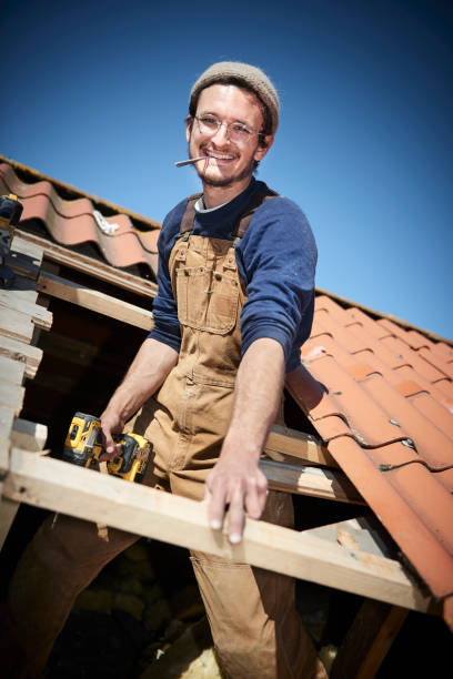 Young timber working at a roof stock photo