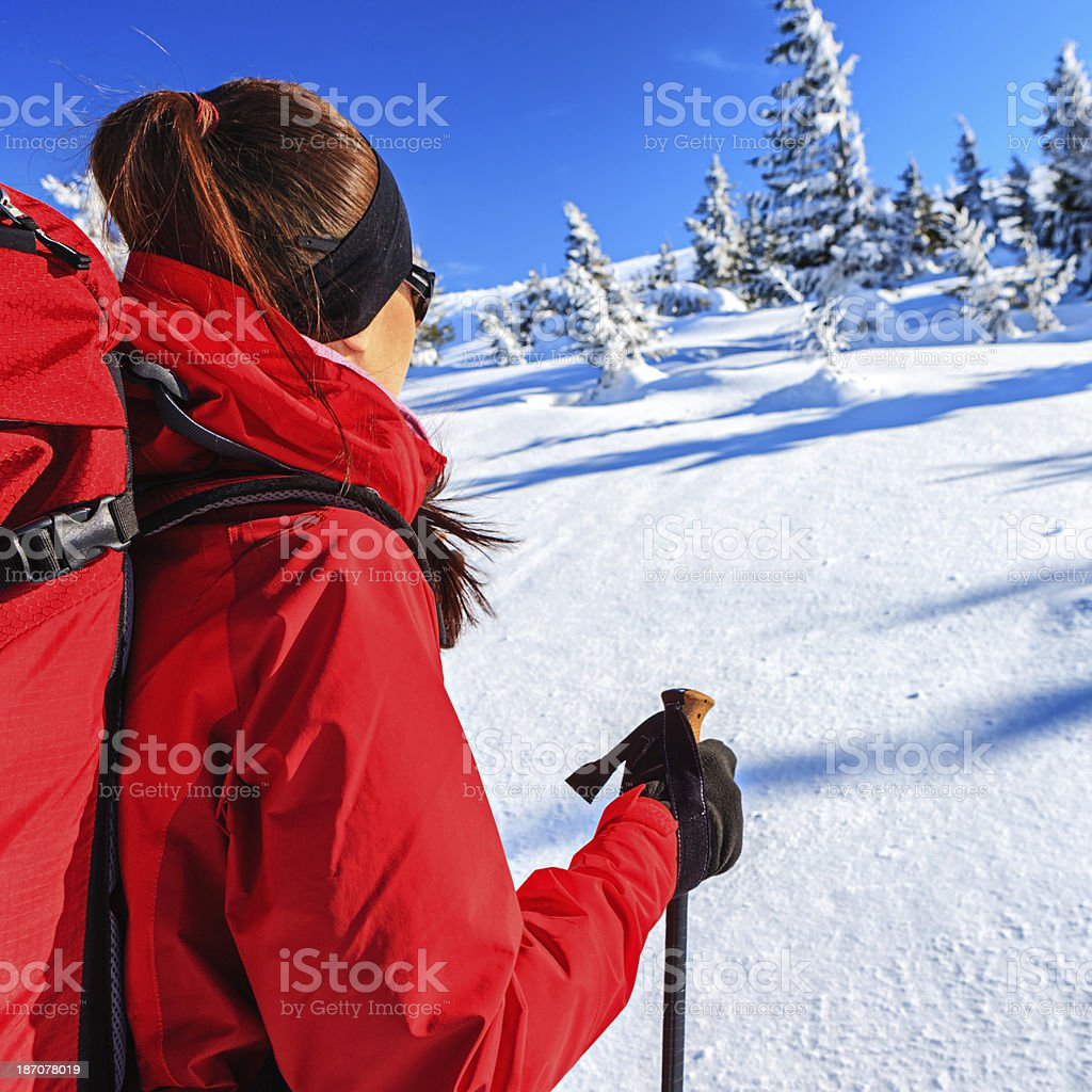 Young tourist trekking during winter royalty-free stock photo