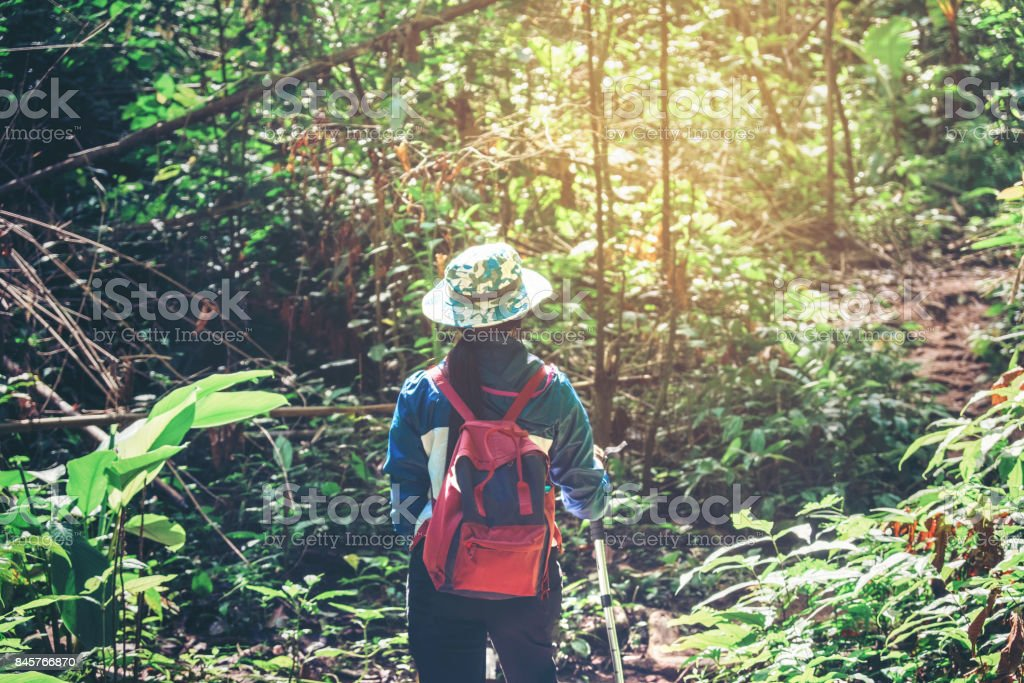 Young tourist woman hiking and  backpacker at Forest Travel concept stock photo