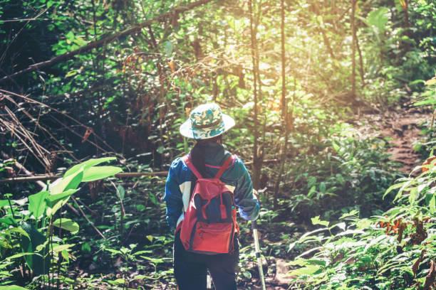 若い観光客女性ハイキングと森旅行の概念でのバックパッカー - 自然旅行 ストックフォトと画像