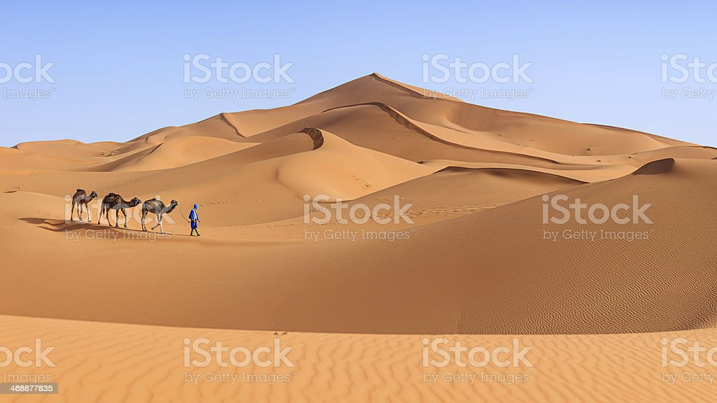 Young Tuareg with camel on Western Sahara Desert, Africa 36MPix stock photo