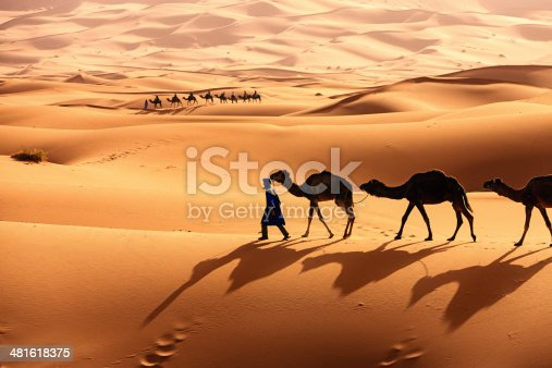 Tuareg with camels on the western part of The Sahara Desert in Morocco. The Sahara Desert is the world's largest hot desert.