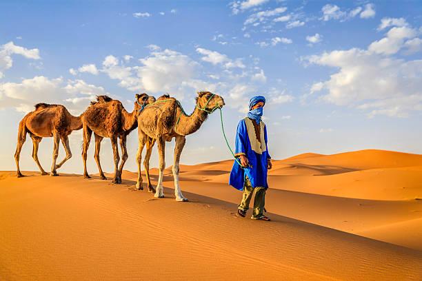 Młody Tuaregowie z Wielbłądy na Western Sahara pustynia w Afryce. – zdjęcie