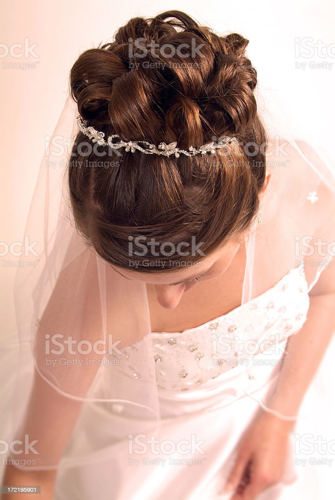 Young Veiled Bride with Beautiful Hair royalty-free stock photo