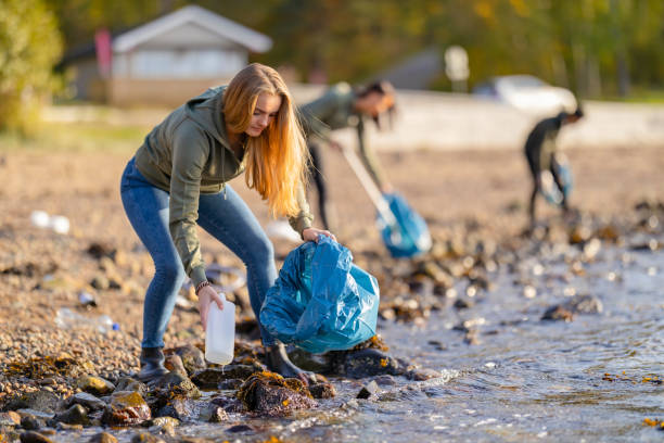 Young volunteers cleaning beach on sunny day stock photo