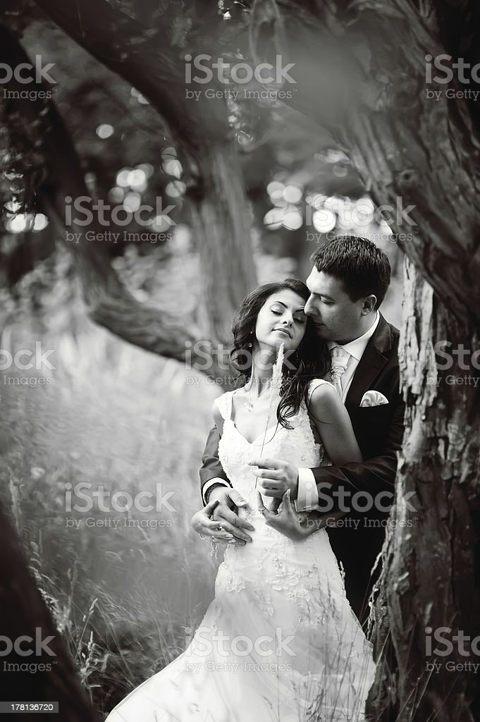 young wedding couple in forest royalty-free stock photo