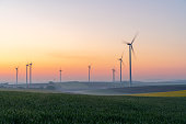 istock Young wheat in field and wind turbines at sunrise 1216403909