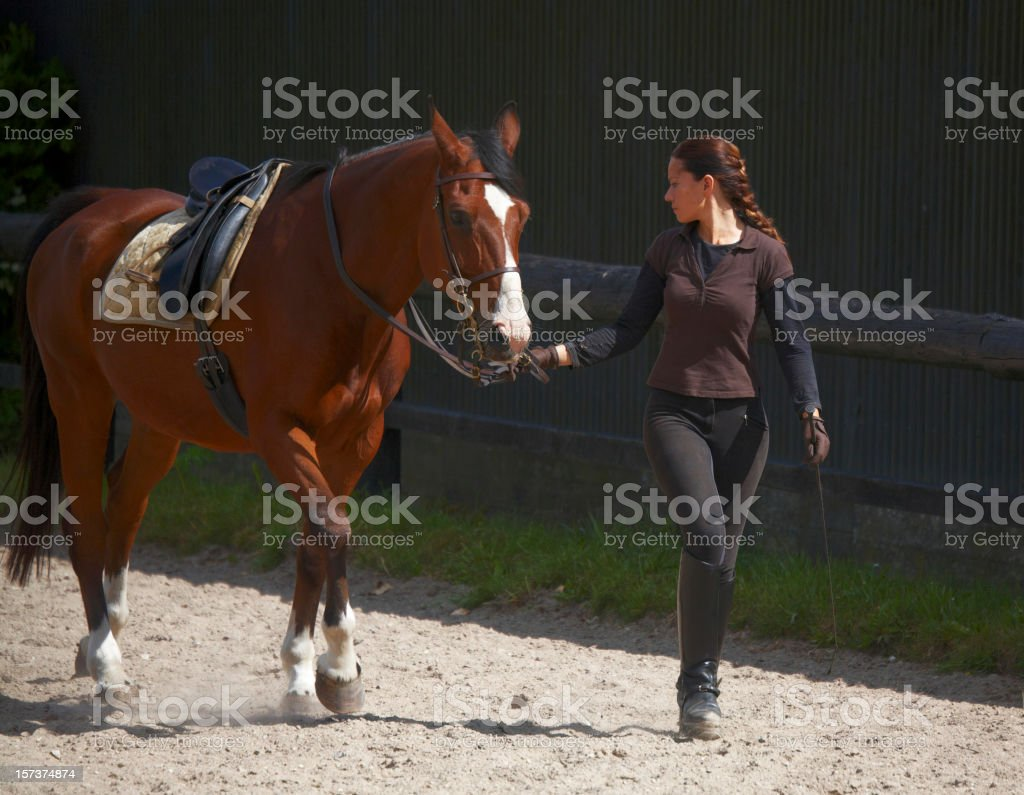 Young woman and her horse stock photo