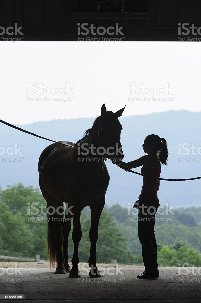 Young Woman and Horse Silhouette, Grooming in Barn Door royalty-free stock photo