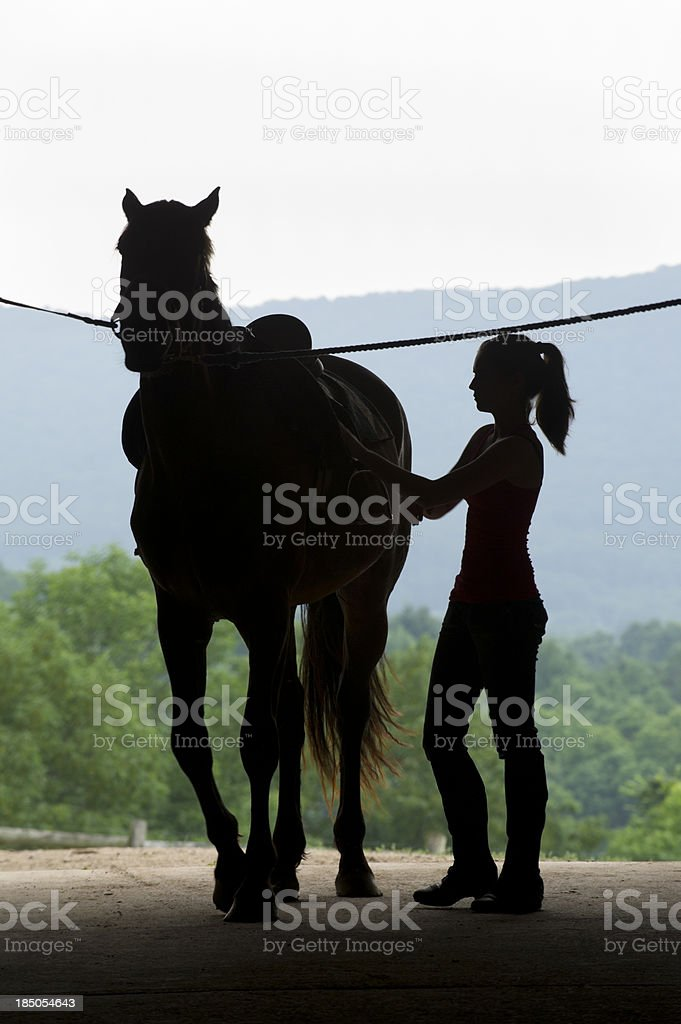 Young Woman and Horse Silhouette in Barn Door, Saddling Up stock photo