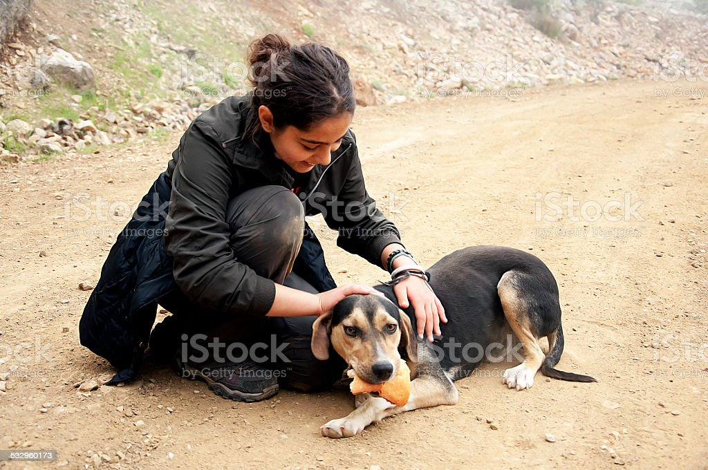 Young woman and  hungry stray dog stock photo