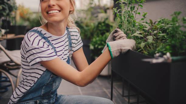 junge frau, die vermittlung von pflanzen in ihrem dachgarten auf dem - dachgarten stock-fotos und bilder