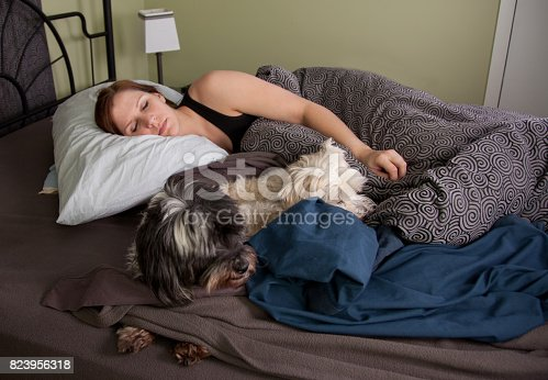 istock young woman asleep with dogs 823956318