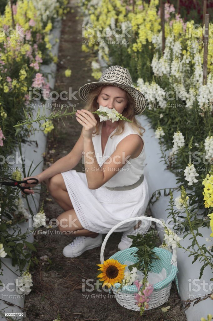 Young woman at a farm. Gardener. stock photo