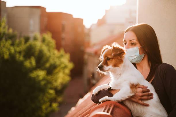 joven en casa en una terraza con máscara protectora. Abrazando a su lindo perro jack Russell. Virus Corona Concepto Covid-19 - foto de stock