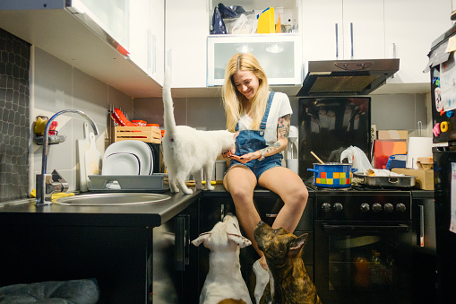 Young woman sitting in the kitchen feeding her pets