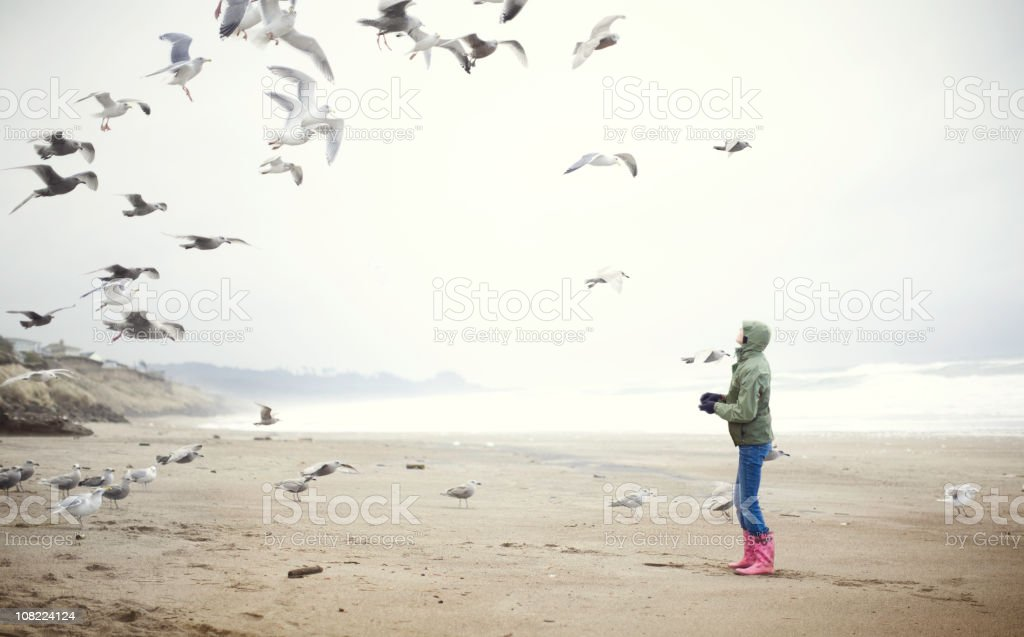 Young Woman at the Beach Feeding Sea Gulls stock photo