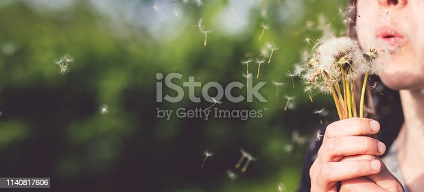 Young caucasian woman blows dandelion.