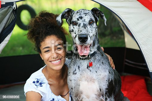 Happy young African woman sitting in a tent with a Merle Great Dane