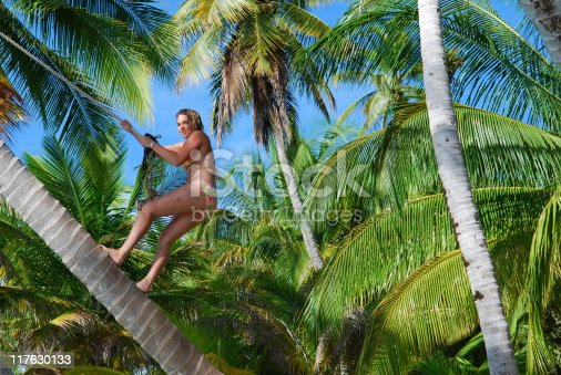 istock Young woman walking up a coconut palm tree 117630133