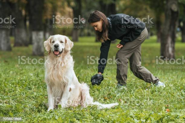 Young woman cleaning after golden retriever dog in park picture id1058823868?b=1&k=6&m=1058823868&s=612x612&h=u5tolcz1fquyfyyuwtqwpdgh10v4tg5y3d7ywjr2lyw=