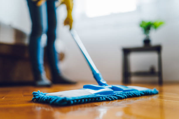 Young woman cleaning house stock photo