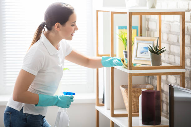 young woman cleaning the shelf in house - maid stock pictures, royalty-free photos & images