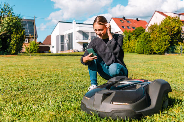 Young woman controlling robot lawn mower in summer garden stock photo