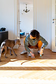 Young woman crouching and wiping off her Weimaraner puppy's pee