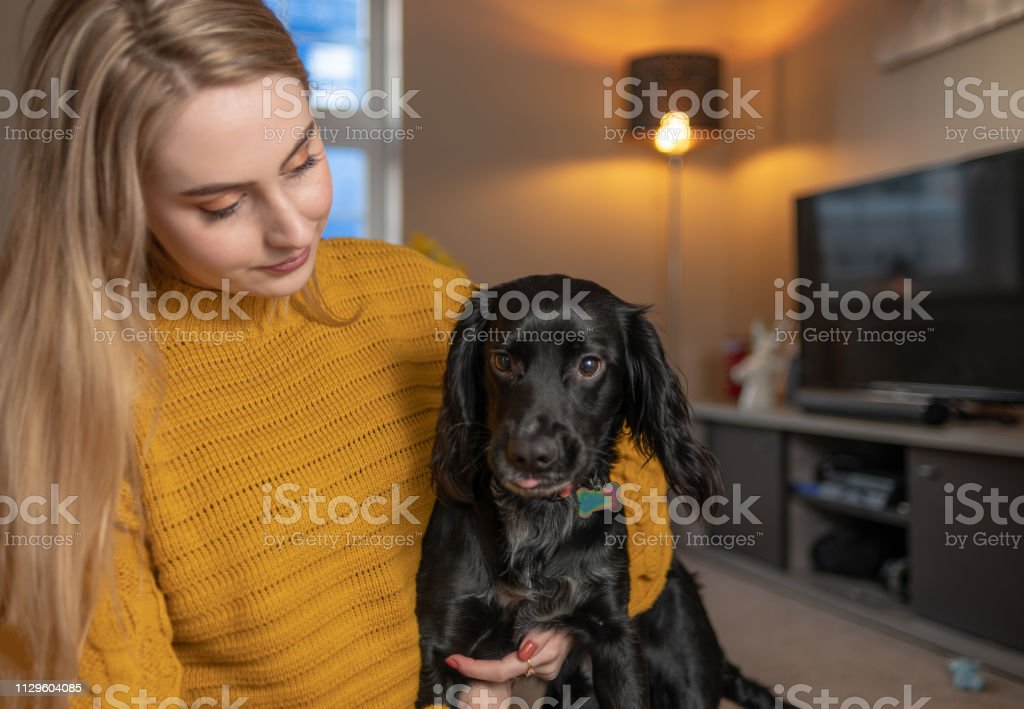 Young woman cuddles her dog at home stock photo