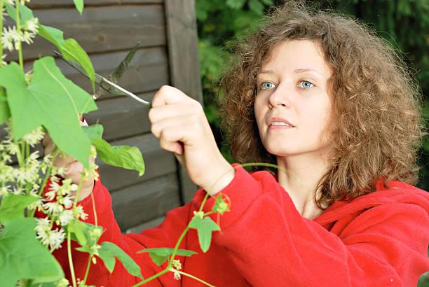 Junge Frau Schneiden Kletterer plant – Foto