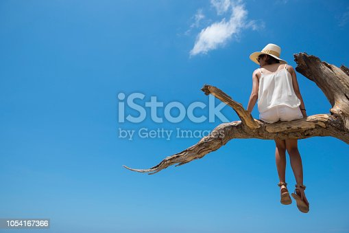 A young Thai woman visiting Indonesia enjoys the dramatic view from atop a tree limb at Kelingking Beach, located on the island of Nusa Penida near Bali.