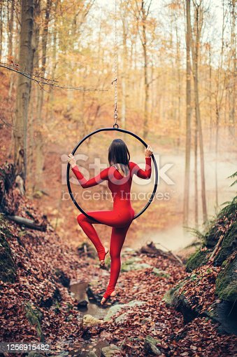 Beautiful and flexible young woman performing and dancing on aerial hoop in forest at autumn. She is playing and makes some nice and elegant moves. Red one-piece costume reveals her perfect body shaped with sports and good habits