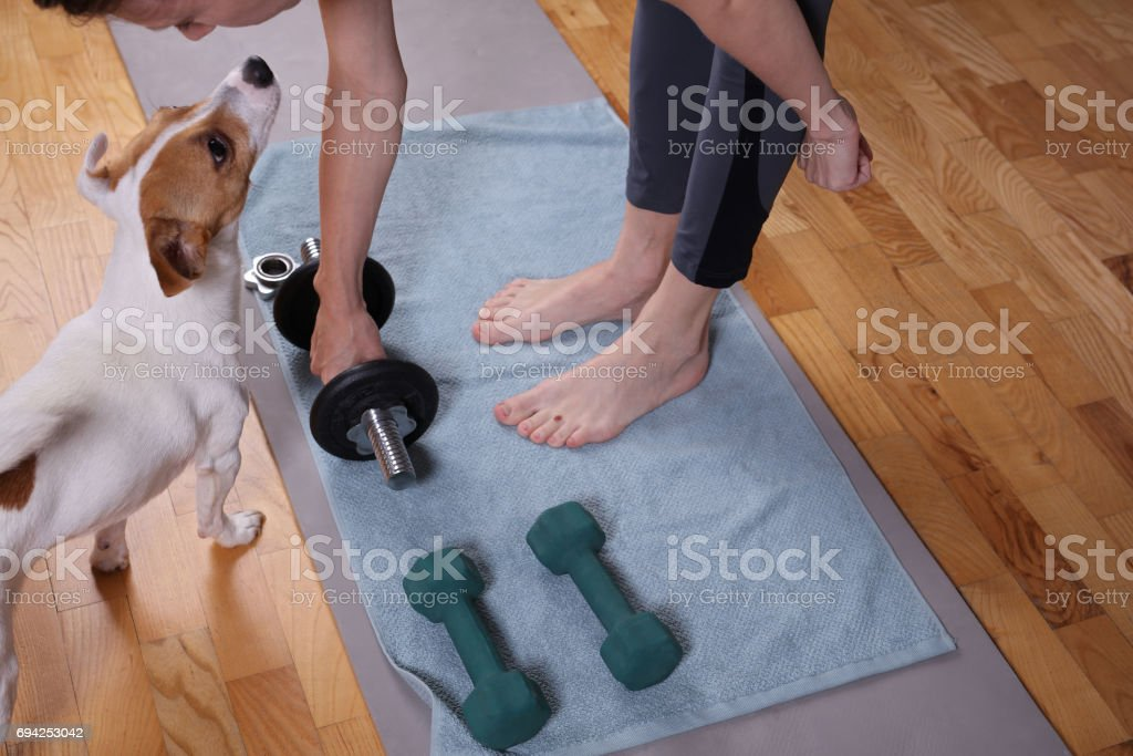 Young woman doing fitness exercises with dog wathing her. Felmale...